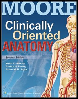 Moore Clinically Oriented Anatomy